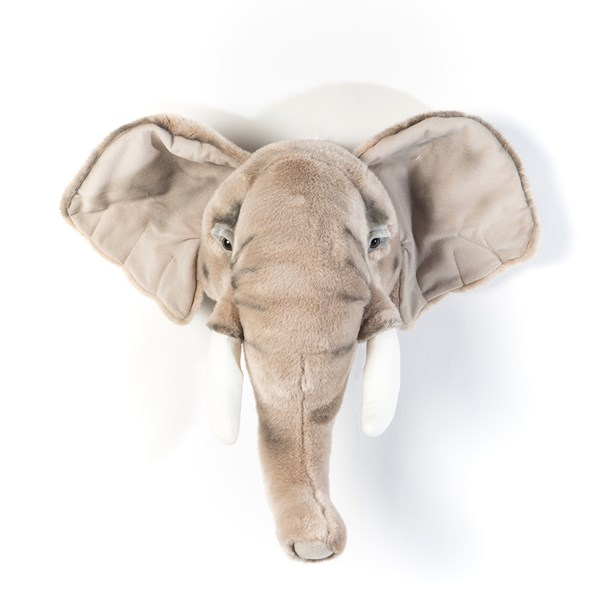 Wild & Soft Elephant Head