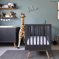 A Nursery Inspired By Nature