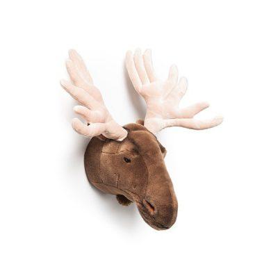 Alfred-Moose-head