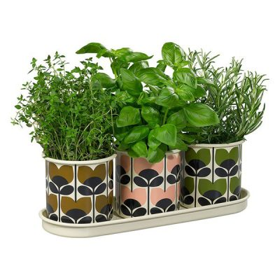 Orla-Kiely-Set-of-3-Herb-Pots-with-Tray