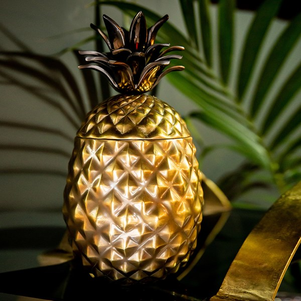 Culinary Concepts Pineapple Ice Bucket in Gold and Silver