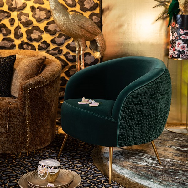 Luxury Velvet Occasional Chair with Gold Legs