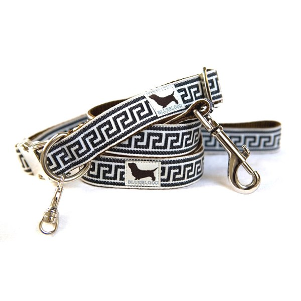 FILIMORE Large Dog Collar with Matching Lead