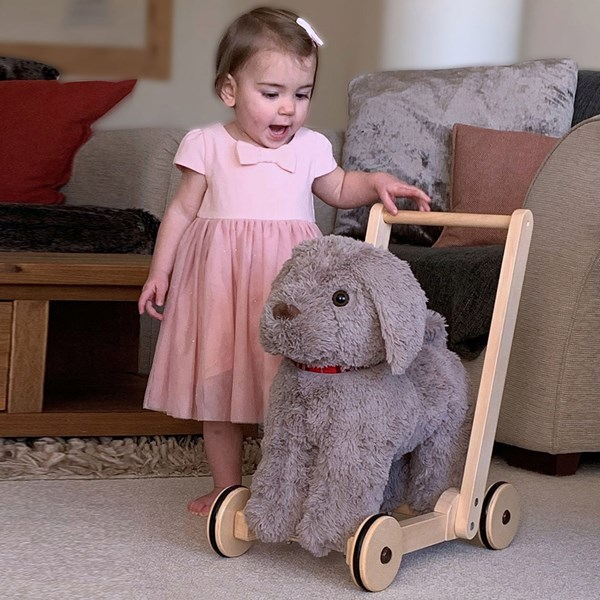 Sensory Toy and Ride On for Toddlers
