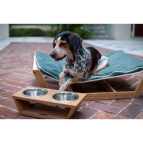 DOG HAMMOCK LARGE Bamboo Dog Bed with Berry Blue Cushion