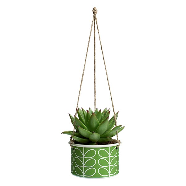 Orla Kiely Small Hanging Plant Pot in Linear Stem Apple Print