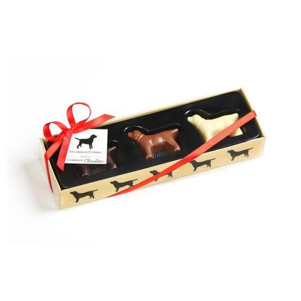 Labrador Dog Shaped Chocolates