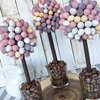 Mini Egg Sweet Trees by Brown