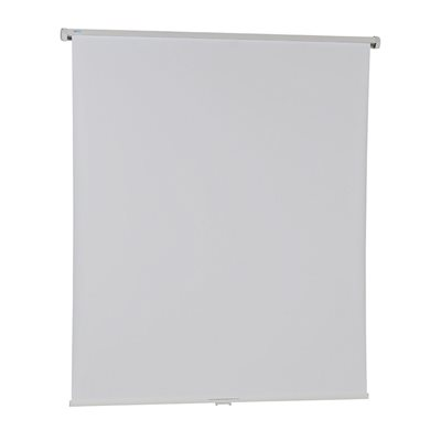 Image of 4 You Projector Screen