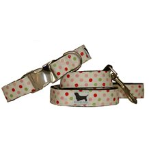 LARGE DOG COLLAR WITH LEAD in Bette