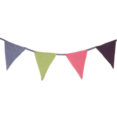 PLAIN BUNTING by Win Green