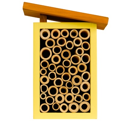 BEE HOUSE in Yellow