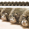 Hedgehog Draught Excluder
