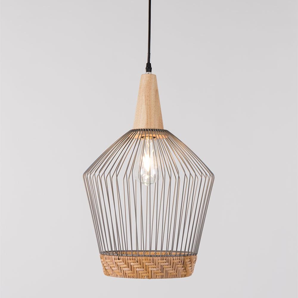 Enchanting Wire Pendant Light Frieze - Wiring Diagram Ideas ...
