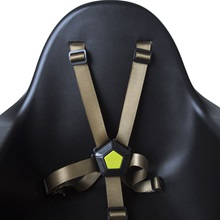 Black-High-Chair-with-Gold-Harness.jpg