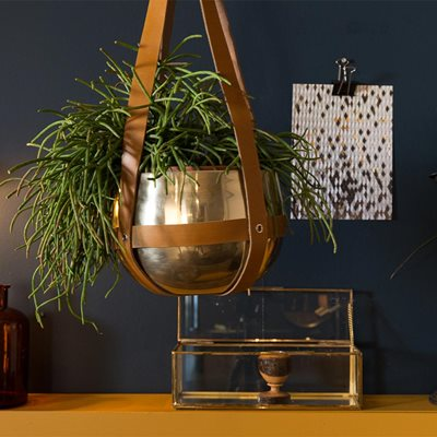 OASIS PLANT HANGER with Leather Straps