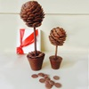 Chocolate Button Sweet Tree Gift