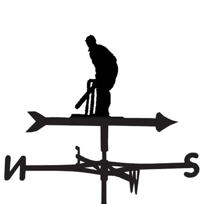 WEATHERVANE in Cricket Design
