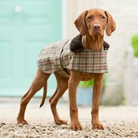 Product photograph showing Tweed Dog Coat In Balmoral Check Design - Medium