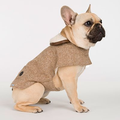 TWEED DOG COAT in Camel Herringbone Design