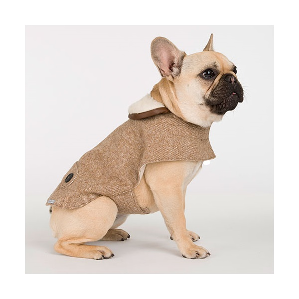 Dog-Coat-Tweed-Camel-Lifestyle.jpg