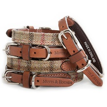 Dog-Collar-Balmoral-Tweed.jpg