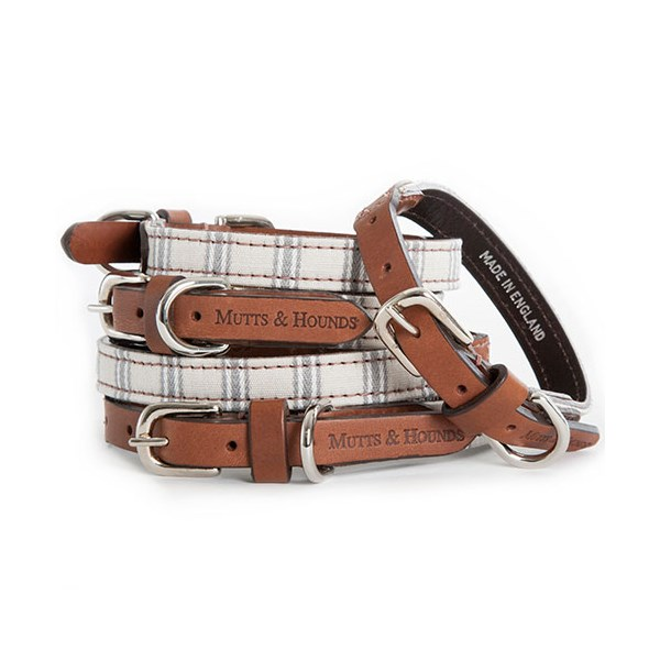 DESIGNER DOG COLLAR in Mist Tickling