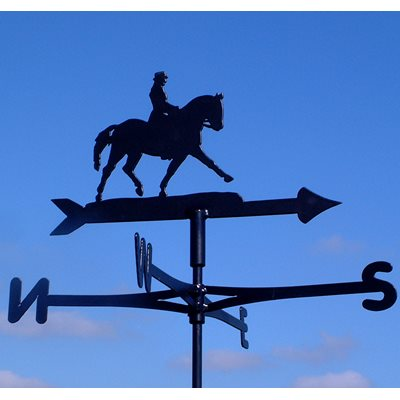WEATHERVANE in Dressage Design