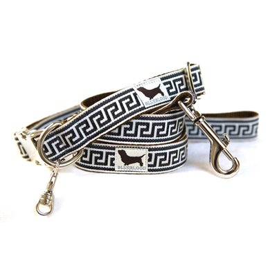 LARGE DOG COLLAR WITH LEAD in Fillmore