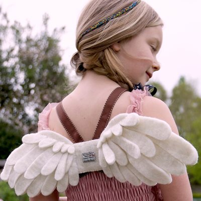 FAIRY WINGS CHILDRENS DRESSING UP SET