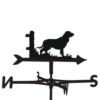 WEATHERVANE in Field Spaniel Design