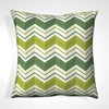 Green and White Scatter Cushions