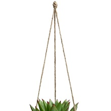 Hanging-Plant-Pot-Small-Ropes.jpg