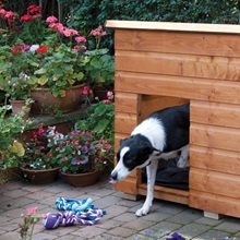 Honey-Brown-Dog-Kennel-for-Outside.jpg