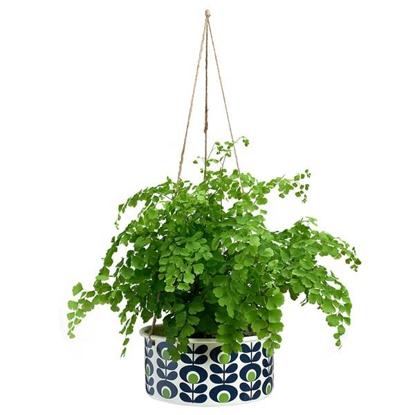 Orla Kiely Large Hanging Plant Pot in Oval Spot Flower Apple Print