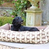 Labrador Print Dog Bed in Brown
