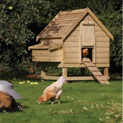 ROWLINSON LARGE WOODEN CHICKEN COOP