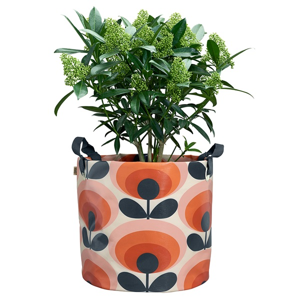 Large-Persimmon-Orange-Oval-Flower- Plant-Bag.jpg