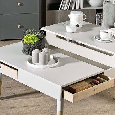 LORI COFFEE TABLE WITH STORAGE in Cashmere