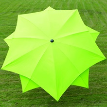 Lotus Garden Umbrella Lime.jpg