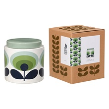 Oval-Flower-Storage-Jar-in-Green.jpg