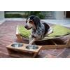 PET HAMMOCK Large Dog Bed with Kiwi Green Cusion