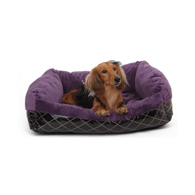 PUPPY ANGEL Cozy Couch Luxury Sleeper Purple