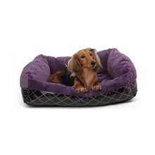 PUPPY-ANGEL-Cozy-Couch-Luxury-Sleeper-Purple-Large_1.png