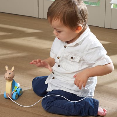 PETER RABBIT™ PULL ALONG TOY
