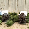 Chocolate Buttons Pine Cone Gift for Christmas