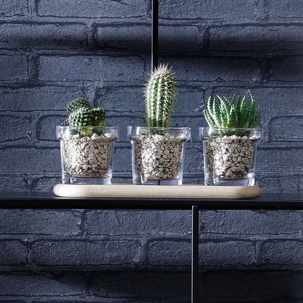 Set of 3 Stylish Indoor Plant Pots