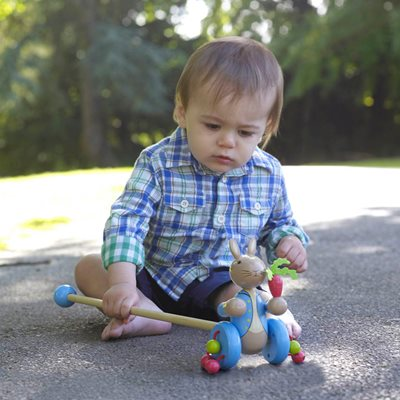 PETER RABBIT™ PUSH ALONG TOY