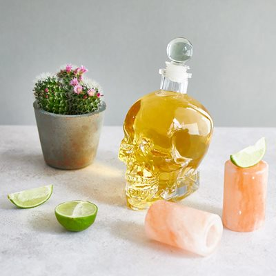 Himalayan Salt Shots and Skull Decanter Barware Set