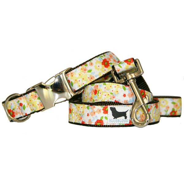 SWEET TARTS Large Dog Collar with Matching Lead